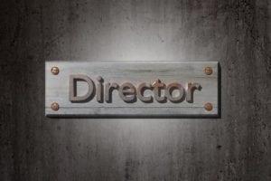 director liability; director duties and Responsibilities; directors dutiesdirecotr's duty; alberta director Responsibilities; alberta director;