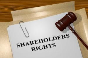 shareholders; shareholders agreement; learn your rights; corporation