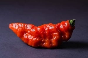 spicy burger; ghost pepper; liability; waiver; restaurant sued