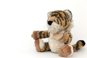 exotic animals, child endangerment, wattants, tigers, burglary