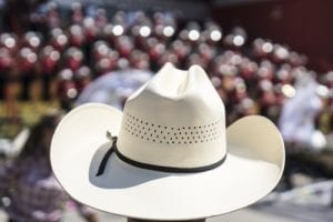 family law; family lawyers; child support; stampede; Calgary