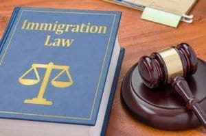 immigration law, deportation, gavel, textbook, appeal
